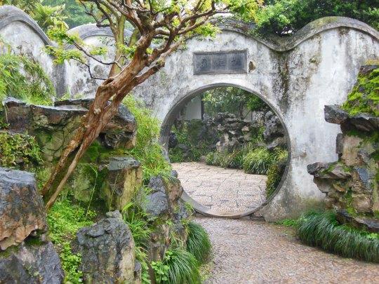 humble garden 15